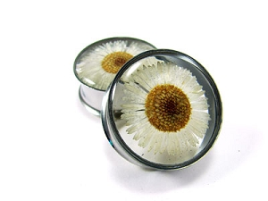 Embedded Daisy Flower Resin Plugs