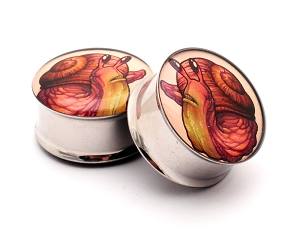 Snail Picture Plugs