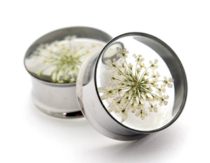 Embedded White Queen Anne's Lace Flower Resin Plugs