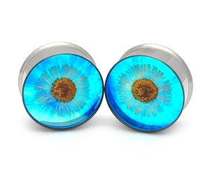 Embedded Daisy on Blue Background Flower Resin Plugs