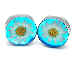 Embedded White Chrysanthemum on Blue Background Flower Resin Plugs