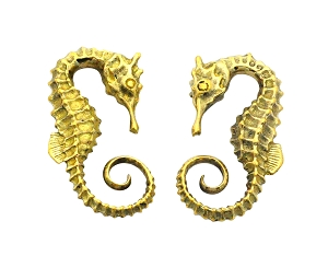 Pair of Brass Seahorse Ear Weights
