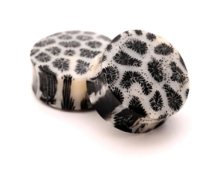Black and White Coral Plugs