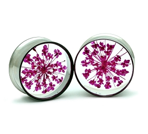 Embedded Pink Queen Anne's Lace Flower Resin Plugs