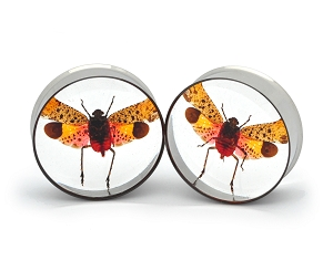 Embedded Lanternfly Resin Plugs