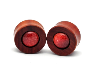Saba Wood Concave Plugs with Goldstone
