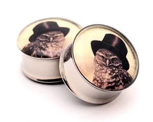 Steampunk Owl Picture Plugs