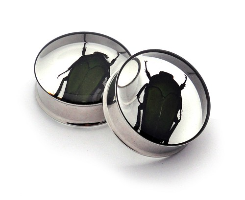 Embedded Copper Flower Beetle Resin Plugs